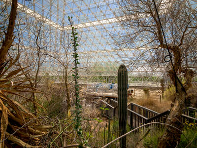 Atomic Tourism Biosphere 2